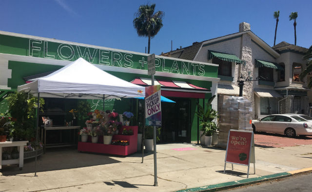 Florist in Hillcrest reopens for business