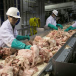 Meat packing plant workers