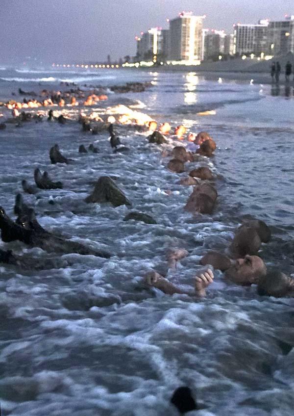 Navy Seals Resume Hellish Coronado