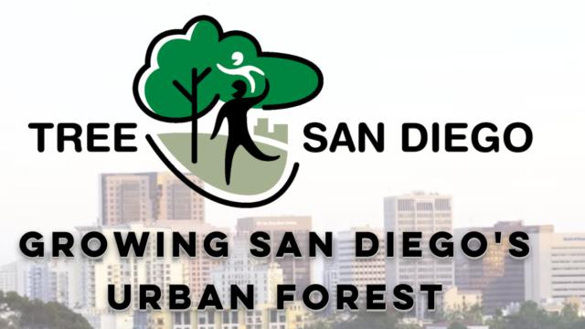 Tree San Diego web site