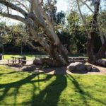 Picnic area at Old Poway Park.