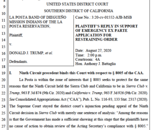 La Posta band's motion for temporary restraining order (PDF)