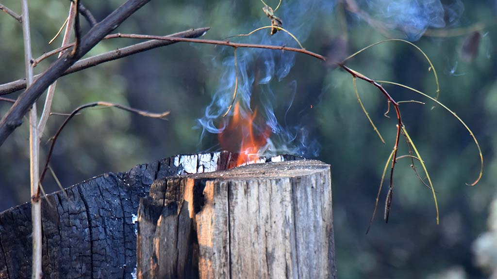 Fire burned in the remnants of a tree stump in front of home on Viejas Grade Road.