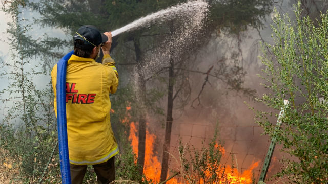 A Cal Fire firefighter on the line at Barnett Vineyards