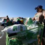 Volunteers hand out Thanksgiving turkeys