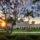 USD Ranked 10th Nationally on Sierra Magazine's 'Cool Schools' List